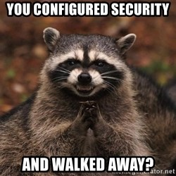 racoon - You configured security and walked away?
