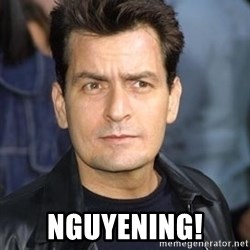 charlie sheen -  NGUYENING!