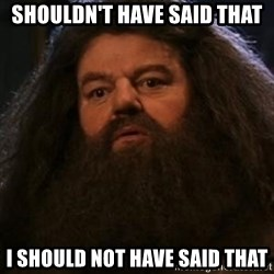 Hagrid what? - shouldn't have said that I should not have said that