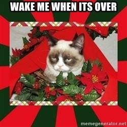 GRUMPY CAT ON CHRISTMAS - wake me when its over