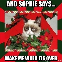 GRUMPY CAT ON CHRISTMAS - and sophie says... wake me when its over