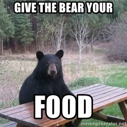 Patient Bear - give the bear your food