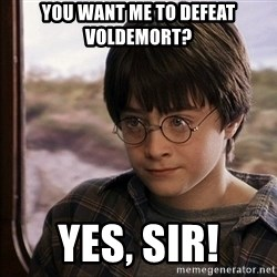 Harry Potter 2 - You want me to defeat voldemort? yes, sir!