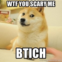 wow such doges - WTF YOU SCARY ME  BTICH