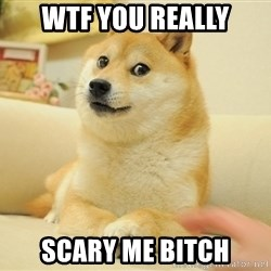 wow such doges - WTF YOU REALLY SCARY ME BITCH