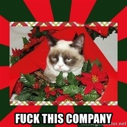 GRUMPY CAT ON CHRISTMAS -  fuck this company