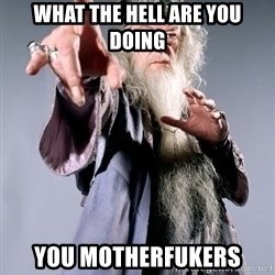 Dumbledore - WHAT THE HELL ARE YOU DOING YOU MOTHERFUKERS