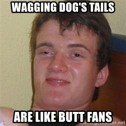 Stoner Stanley - WAGGING DOG'S TAILS ARE LIKE BUTT FANS