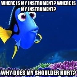 Forgetful Dori - where is my instrument? where is my instrument? why does my shoulder hurt?