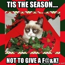 GRUMPY CAT ON CHRISTMAS - tis the season.... not to give a f@&k!