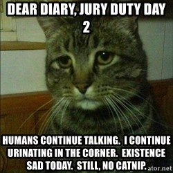 Depressed cat 2 - dear diary, jury duty day 2 humans continue talking.  i continue urinating in the corner.  Existence sad today.  Still, no catnip.