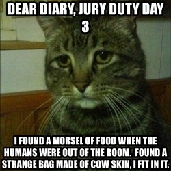 Depressed cat 2 - dear diary, jury duty day 3 i found a morsel of food when the humans were out of the room.  found a strange bag made of cow skin, i fit in it.