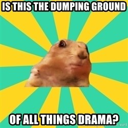 Dramatic Chipmunk - Is this the dumping ground of all things drama?