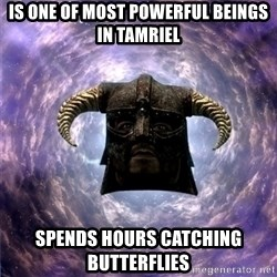 Skyrim - is one of most powerful beings in tamriel spends hours catching butterflies