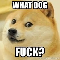 dogeee - what dog  fuck?