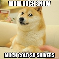 so doge - wow such snow Much Cold so shivers