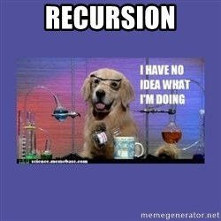 I don't know what i'm doing! dog - RECURSION