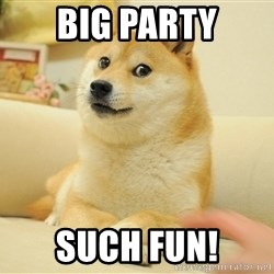 so doge - Big party such fun!