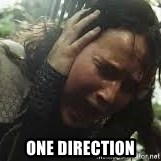Screaming Katniss -  One direction