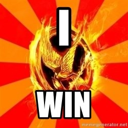 Typical fan of the hunger games - I Win
