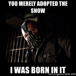 Bane Meme - you mereLY ADOPTED THE SNOW I WAS BORN IN IT