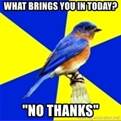 "Best Buy Bluebird - What brings you in today? ""No Thanks"""