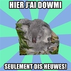 Clinically Depressed Koala - hier j'ai dowmi  seulement dis heuwes!