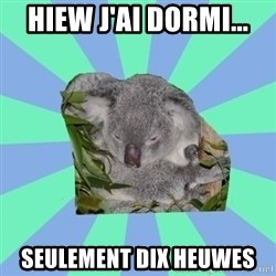 Clinically Depressed Koala - hiew j'ai dormi... seulement dix heuwes
