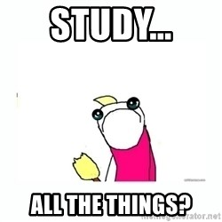 sad do all the things - study... all the things?