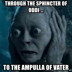 oh no smeagol - through the sphincter of oddi ... TO THE AMPULLA OF VATER