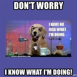I don't know what i'm doing! dog - don't worry I know What I'm doing!