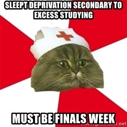Nursing Student Cat - sleept deprivation secondary to excess studying must be finals week