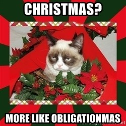 GRUMPY CAT ON CHRISTMAS - Christmas? MORE like obligationmas