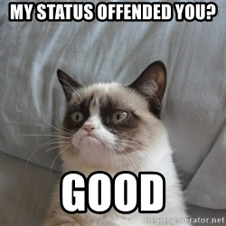 Grumpy cat good - My status offended you? Good