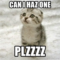 Can haz cat - Can i haz one plzzzz