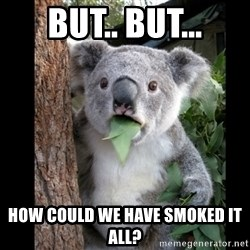 Koala can't believe it - but.. but... how could we have smoked it all?