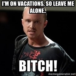 Jesse Pinkman says Bitch - i'm on vacations, so leave me alone.. Bitch!