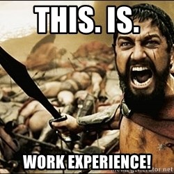 This Is Sparta Meme - this. is.  work experience!