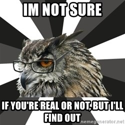 ITCS Owl - im not sure if you're real or not, but i'll find out