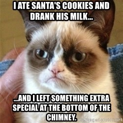 Grumpy Cat  - i ate santa's cookies and drank his milk... ...and i left something extra special at the bottom of the chimney.