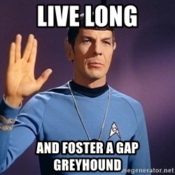 Blessing of spock be with you - LIVE LONG aND fOSTER A gap gREYHOUND