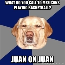 Racist Dog - What do you call to mexicans playing basketball? Juan on juan