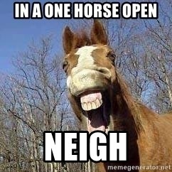 Horse - in a one horse open Neigh