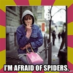 ZOE GREAVES DOWNTOWN EASTSIDE VANCOUVER -  i'm afraid of spiders.