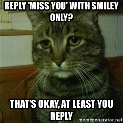 Depressed cat 2 - reply 'miss you' with smiley only? that's okay, at least you reply