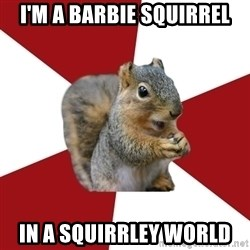 Temple Squirrel - I'm a barbie squirrel in a squirrley World