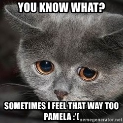 sad cat - You know what? sometimes i feel that way too pamela :'(