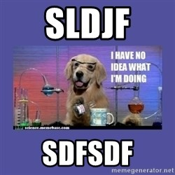 I don't know what i'm doing! dog - sldjf sdfsdf