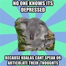 Clinically Depressed Koala - no one knows its depressed because koalas cant speak or articulate their  thoughts