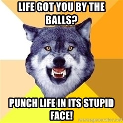 Courage Wolf - life got you by the balls? punch life in its stupid face!